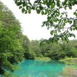 Ao-numa of Goshikinuma ponds
