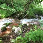 Goshikinuma ponds
