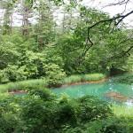 Goshikinuma ponds 五色沼