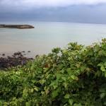 volcanic rocks of Fukue Island