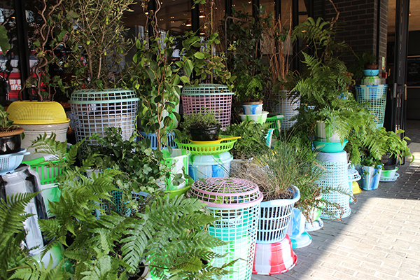 green with plastics